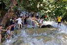 Dunn's River Falls and Fern Gully Highlight Adventure