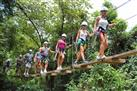 Canopy Tour - Zipline Adventure